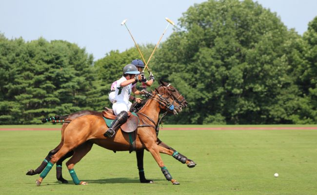 gassin-polo-club-2